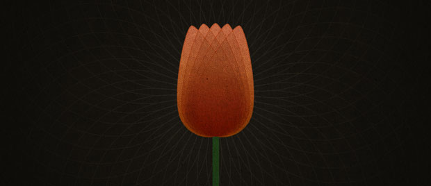 TULIP and Reformed Theology: An Introduction